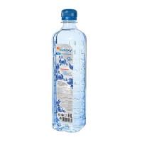 Питьевая вода «РУСОКСИ» 0.55л